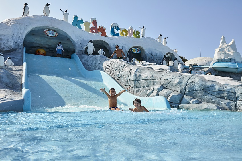Unique Attractions and Water Slides