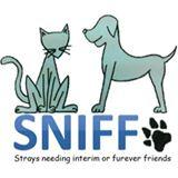 SNIFF animam rescue centre