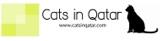 cats in qatar charity