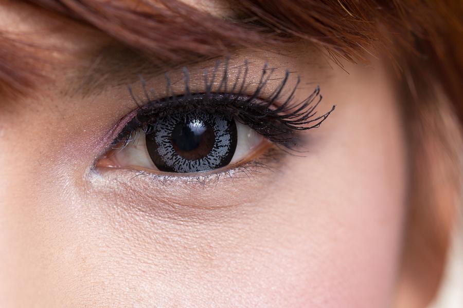 The anatomy of an eye