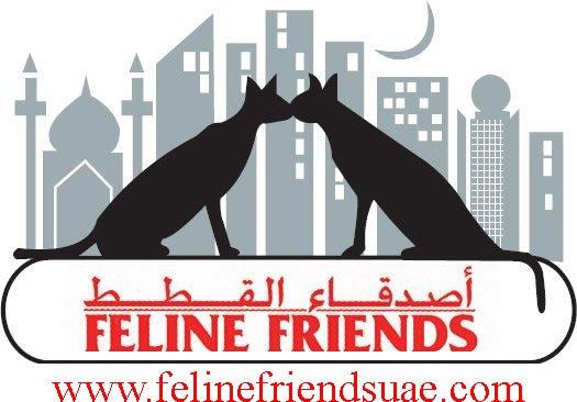 Feline Friends Abu Dhabi
