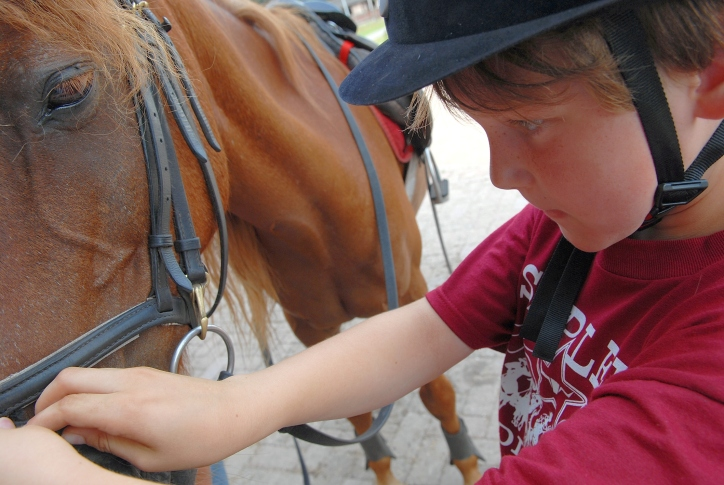 kids horse riding lessons doha