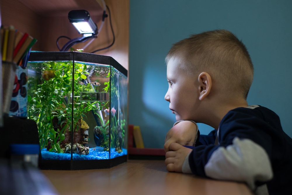 child with pet fish