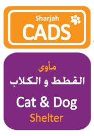 sharjah cat and dog shelter