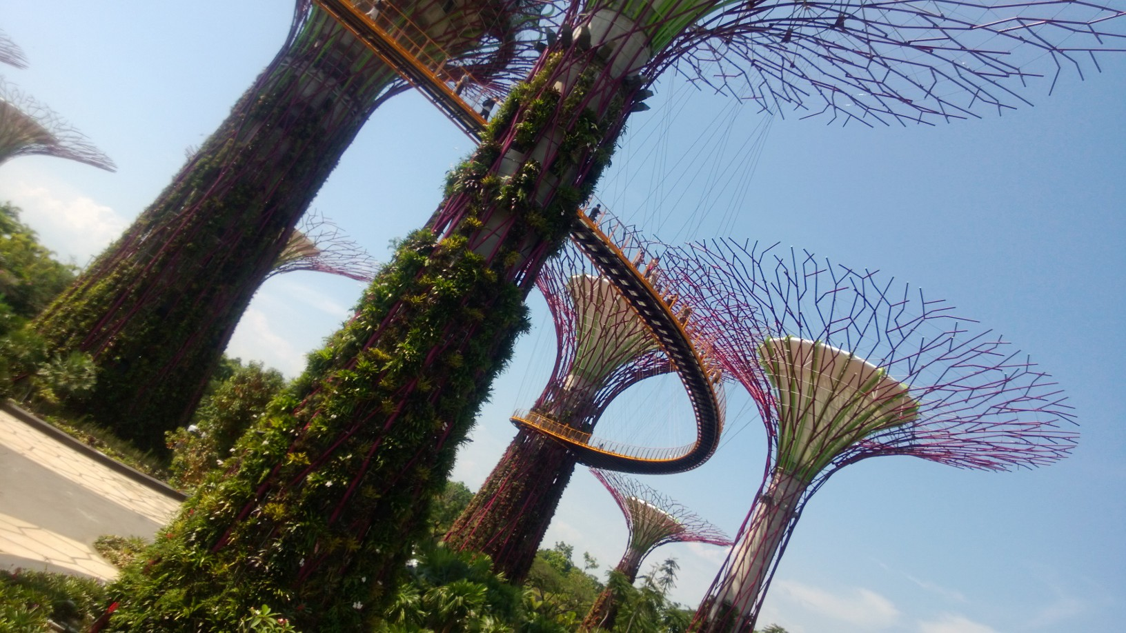 super tree grove