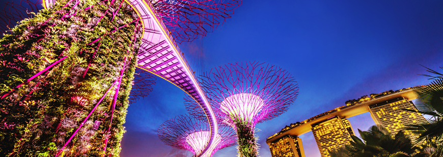 25 Signs You've Adapted to Being an Expat in Singapore