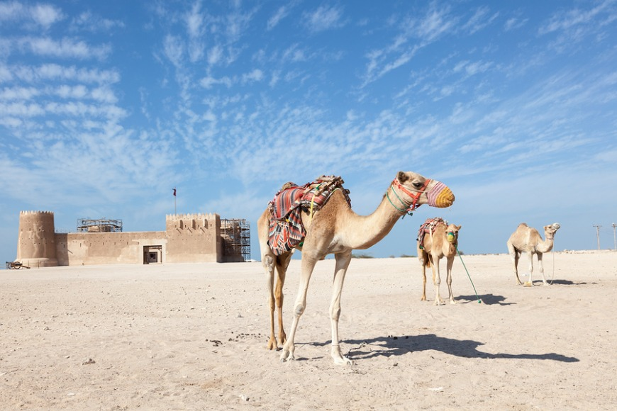 The Al  Zubarah fort is a famous archaeological site, dating back to 1938.
