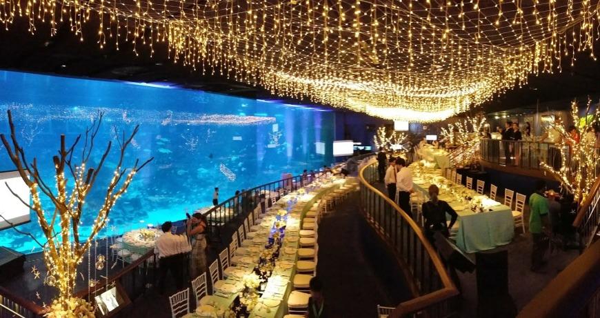 SEA Aquarium   Photo: kexintay.blogspot.ae