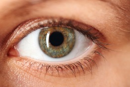 Do You Actually Know What's In Your Eye?