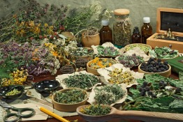 Benefits, Risks and How Insurance Treats Traditional Chinese Medicine