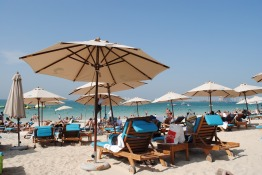 Too Hot in Abu Dhabi? This Could Help Boost Your IVF Success!