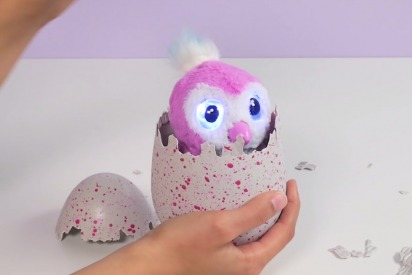 Hatchimals: What to Know and Where to Find Them in Dubai