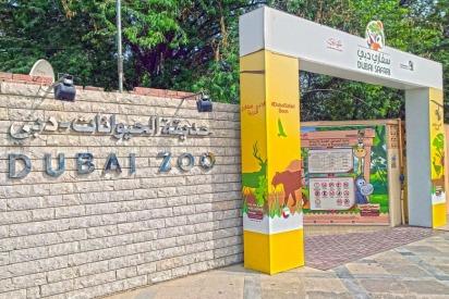 Dubai Zoo Closing Countdown Begins