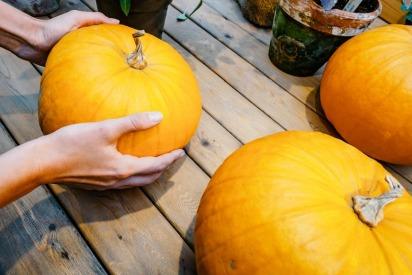 Top 5 Fun Fall Foods to Help Increase Fertility
