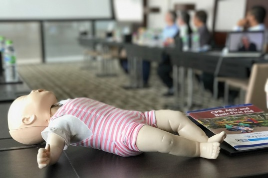 Caduceus Medical Pediatric First Aid, CPR & AED Training