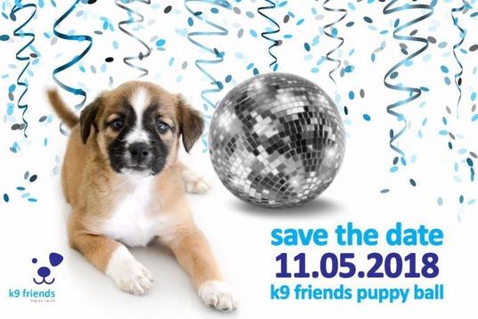 K9 Friends Puppy Ball 2018